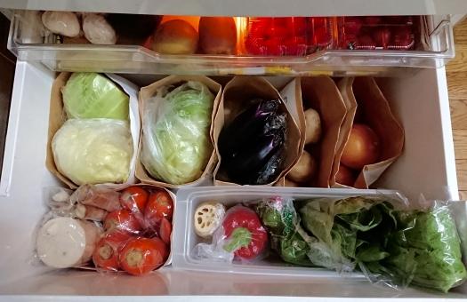 夏野菜 冷蔵保存