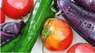 夏野菜 保存方法 常温 冷蔵庫 コツ