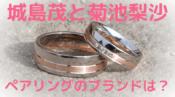 城島茂 菊池梨沙 ペアリング 結婚指輪