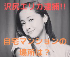 沢尻エリカ 逮捕 自宅 住所 目黒区 マンション 画像