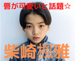 柴崎楓雅 wiki